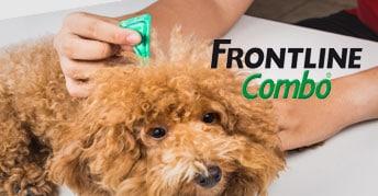 Productos Antiparasitarios FrontLine